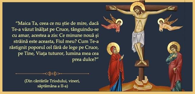 Maică Ta ceea ce nu știe de mire dacă Te-a văzut înălțat pe Cruce